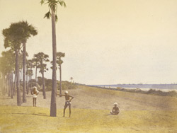 [Coastal scene], Outskirts of Madras